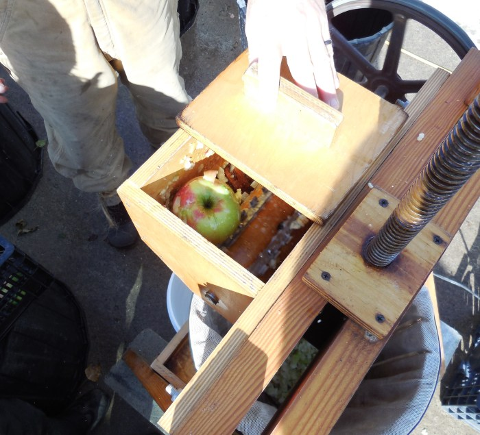 apple grinder box
